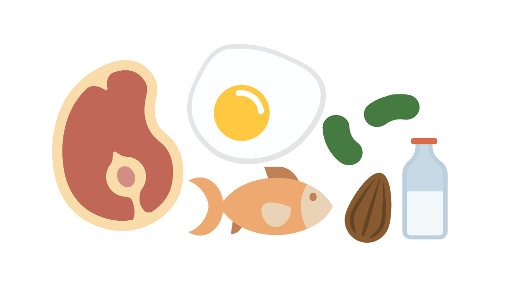 Proteins Clipart.
