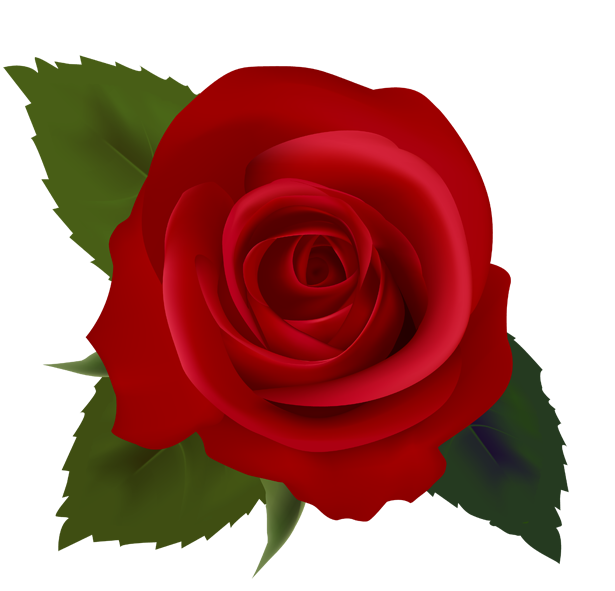 Red Roses Clip Art Images.