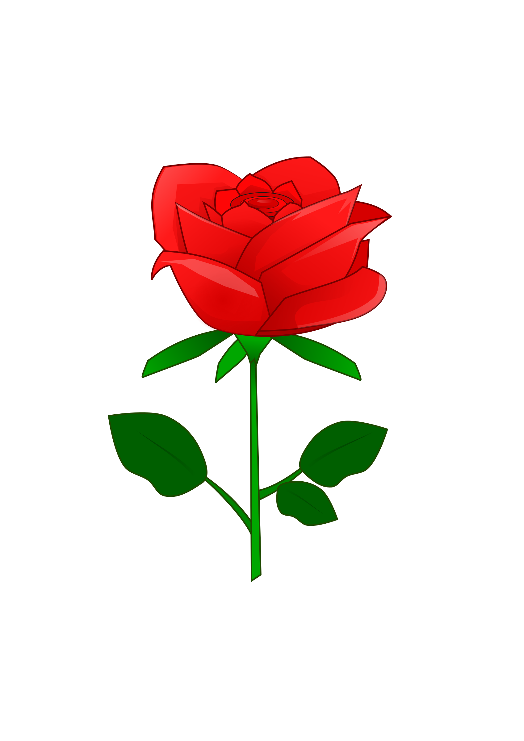 Big red rose clipart.