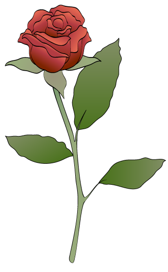 Red rose clipart.