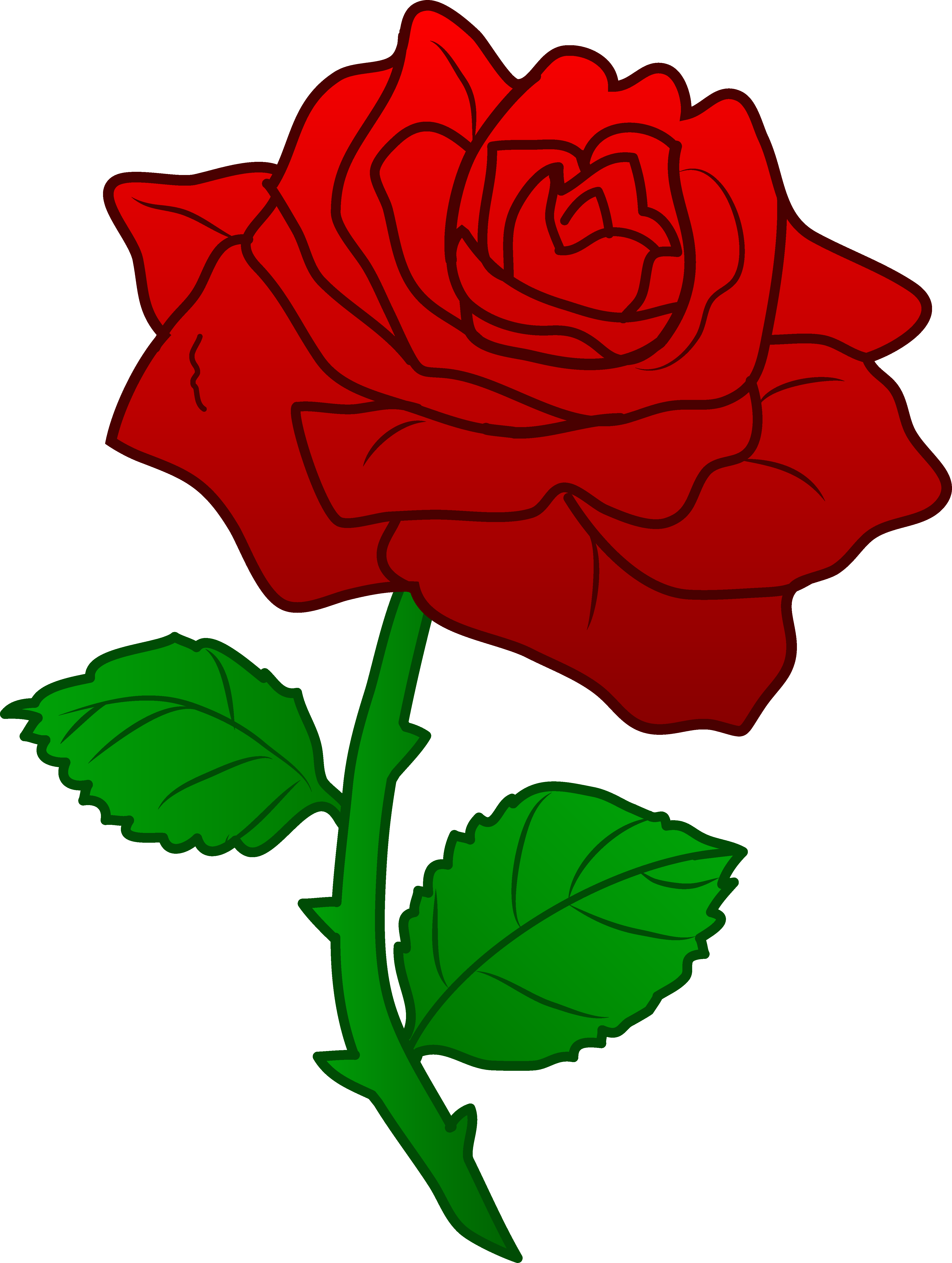 Red Roses Clipart.