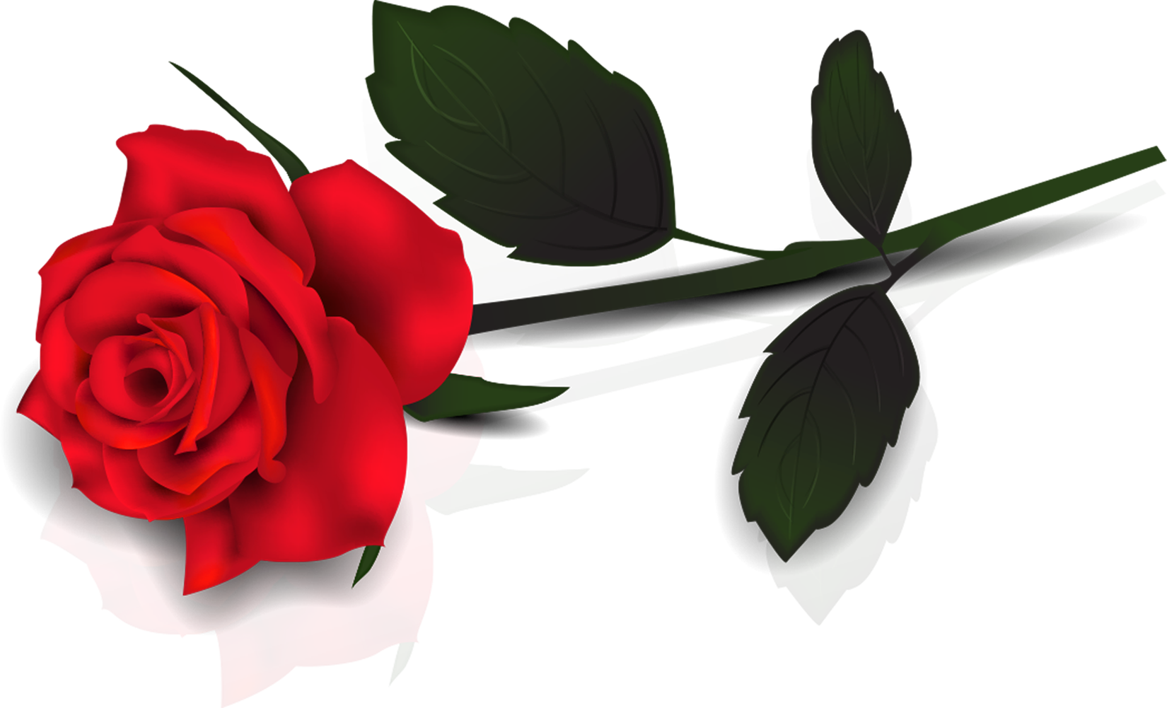 Single Red Rose Clipart.