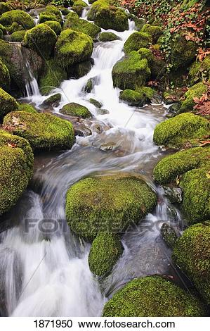 Stock Photography of happy valley, oregon, united states of.