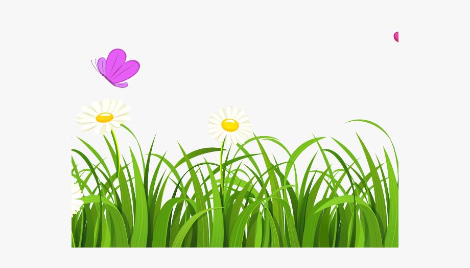 Lawn Clipart Design.