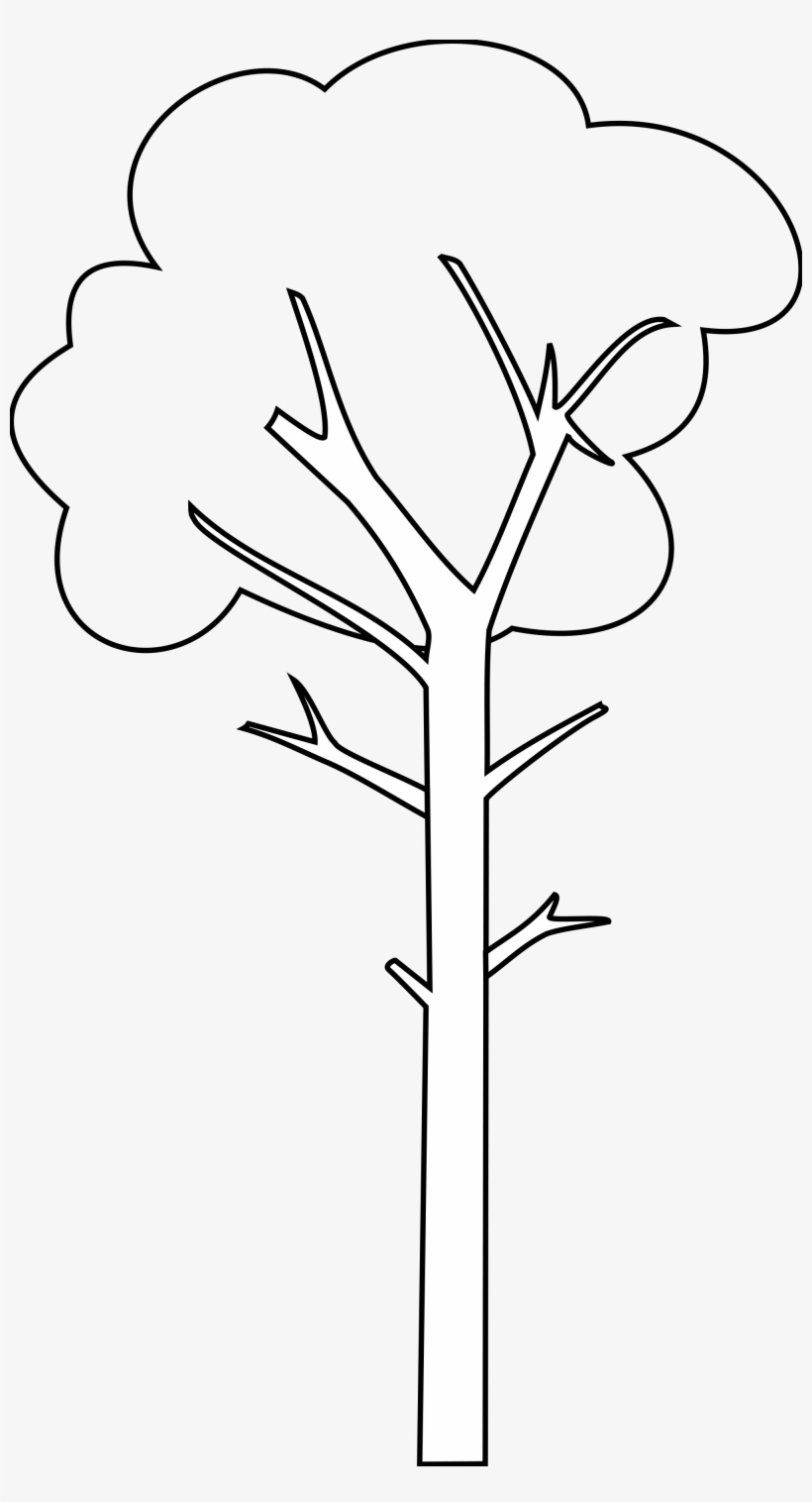 Tall Tree Cartoon Black And White.
