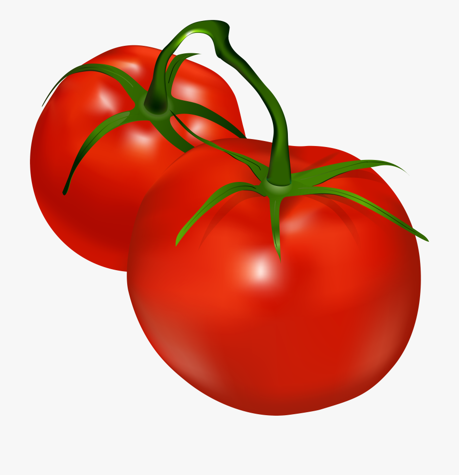 Tomatoes Transparent Png Clip Art , Png Download, Cliparts.