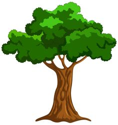 Picture of a tree clipart » Clipart Station.