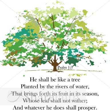 A Tree Planted by Rivers.