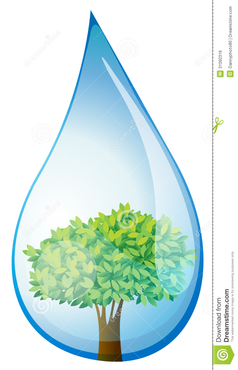 A Tree Inside The Water Drop Royalty Free Stock Image.
