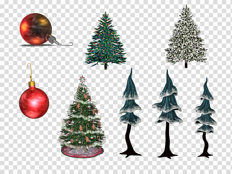 Christmas collection II, trees lot transparent background.