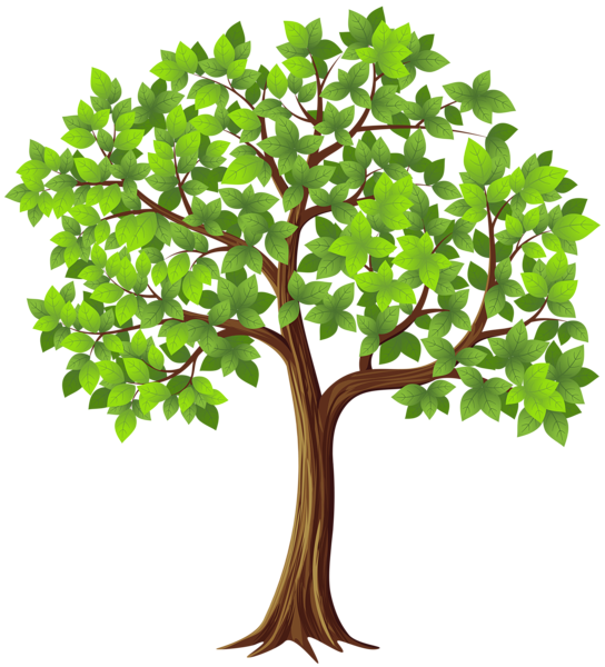 Tree Png With Branches & Free Tree With Branches.png Transparent.