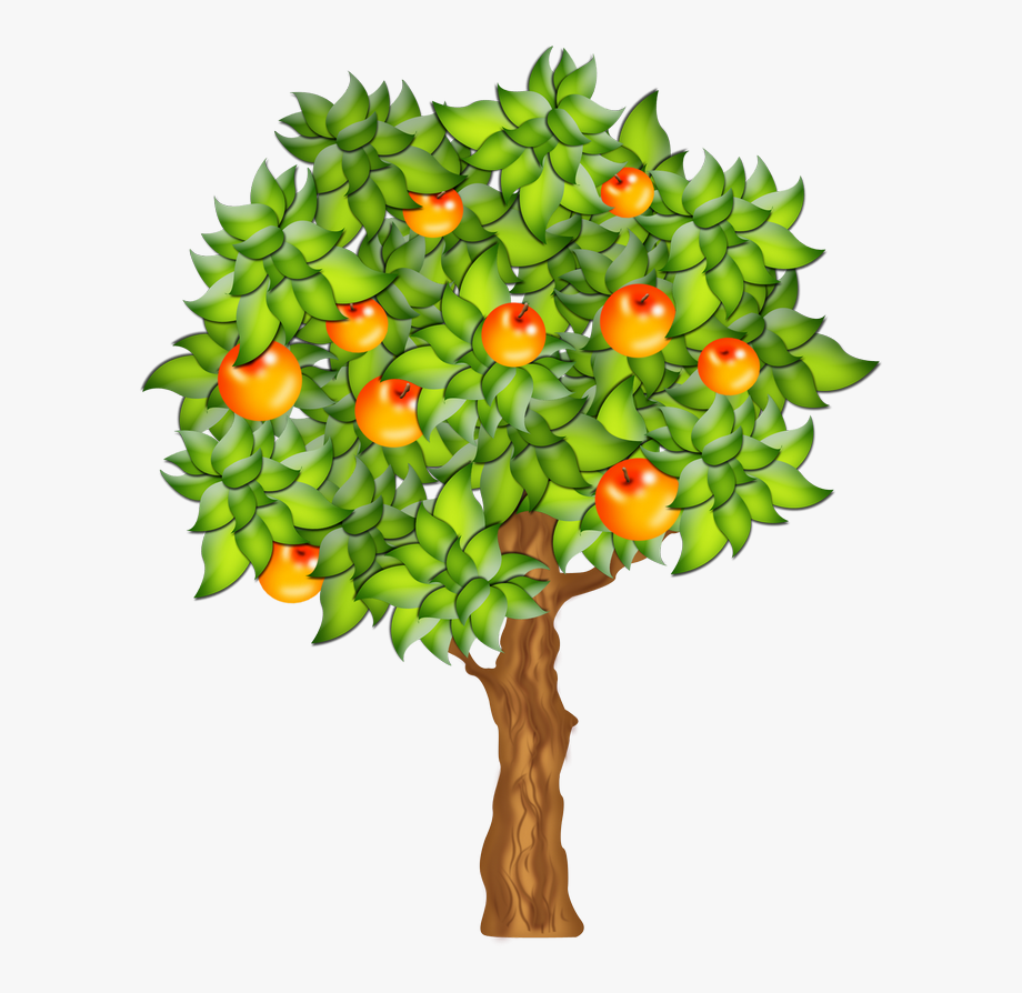 Tree Spring 110.