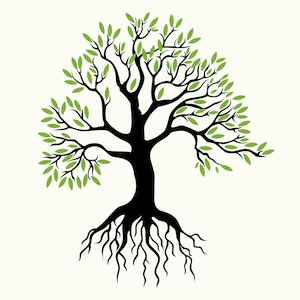 Free Tree Roots Cliparts, Download Free Clip Art, Free Clip.
