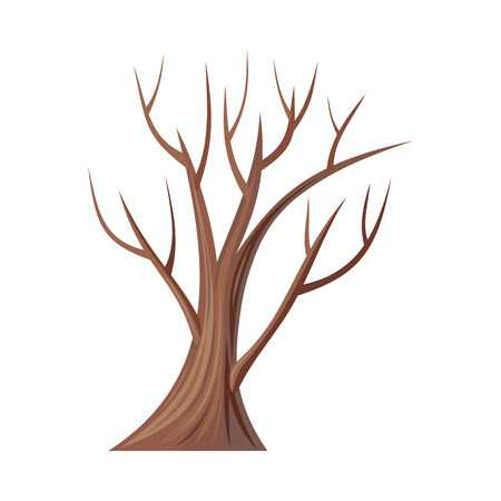 Tree without leaves clipart 2 » Clipart Station.