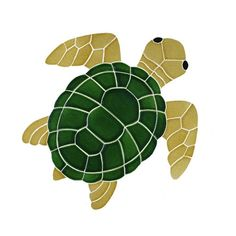 Sea turtle clipart top view.