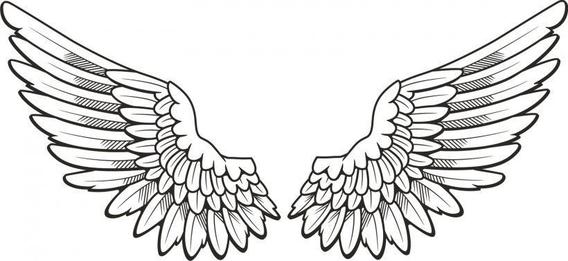 Drawing Angel Clip Art, PNG, 1600x737px, Drawing, Angel.