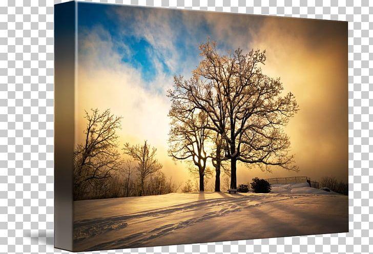 Painting Landscape Winter Sunset PNG, Clipart, Art, Branch.