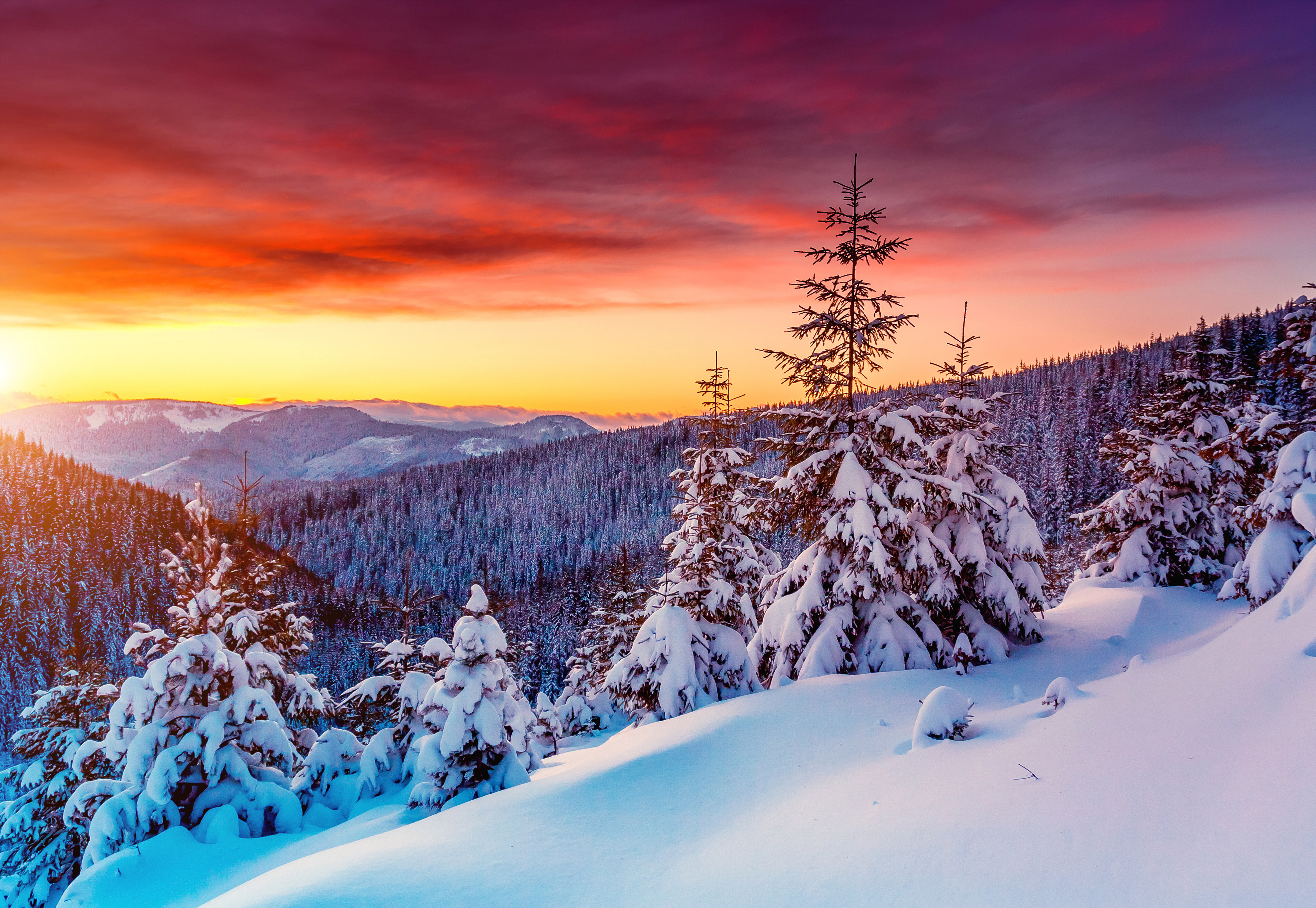 Winter Sunset Background.