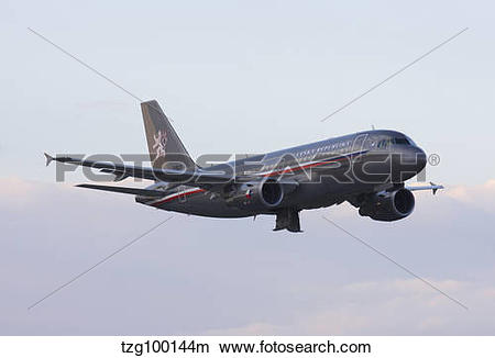 Stock Photo of Czech Air Force flagship Airbus A319. tzg100144m.