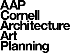 File:AAP logo stacked.png.