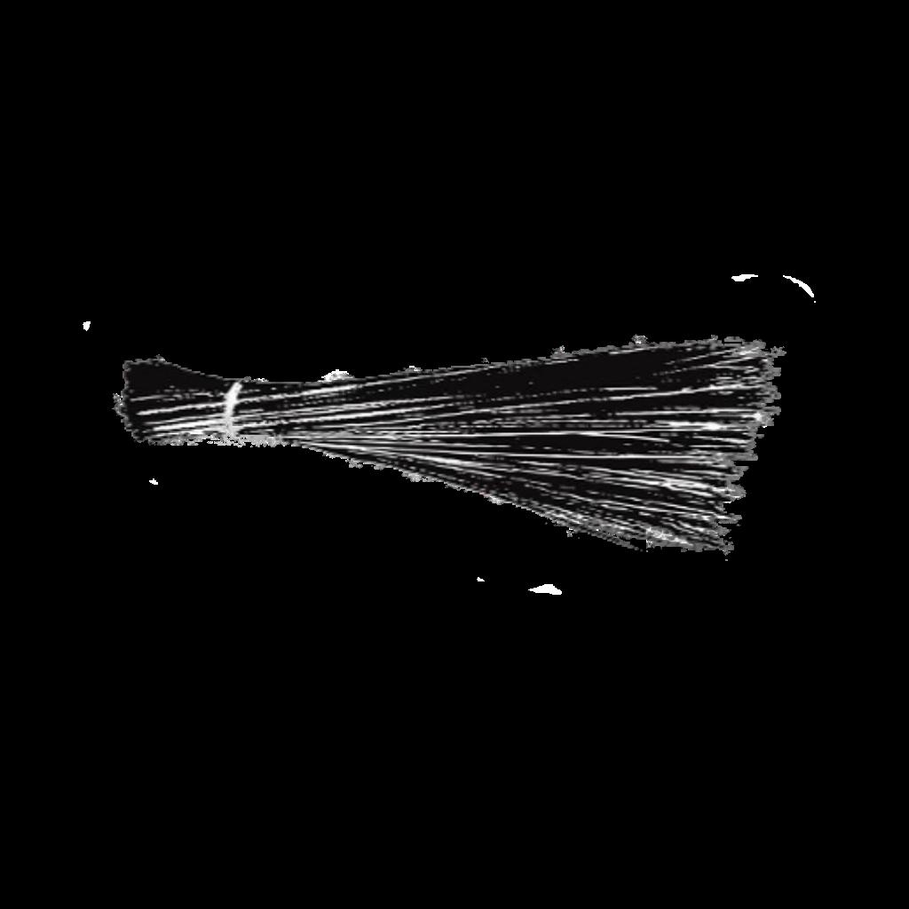 File:AAP symbol.svg.