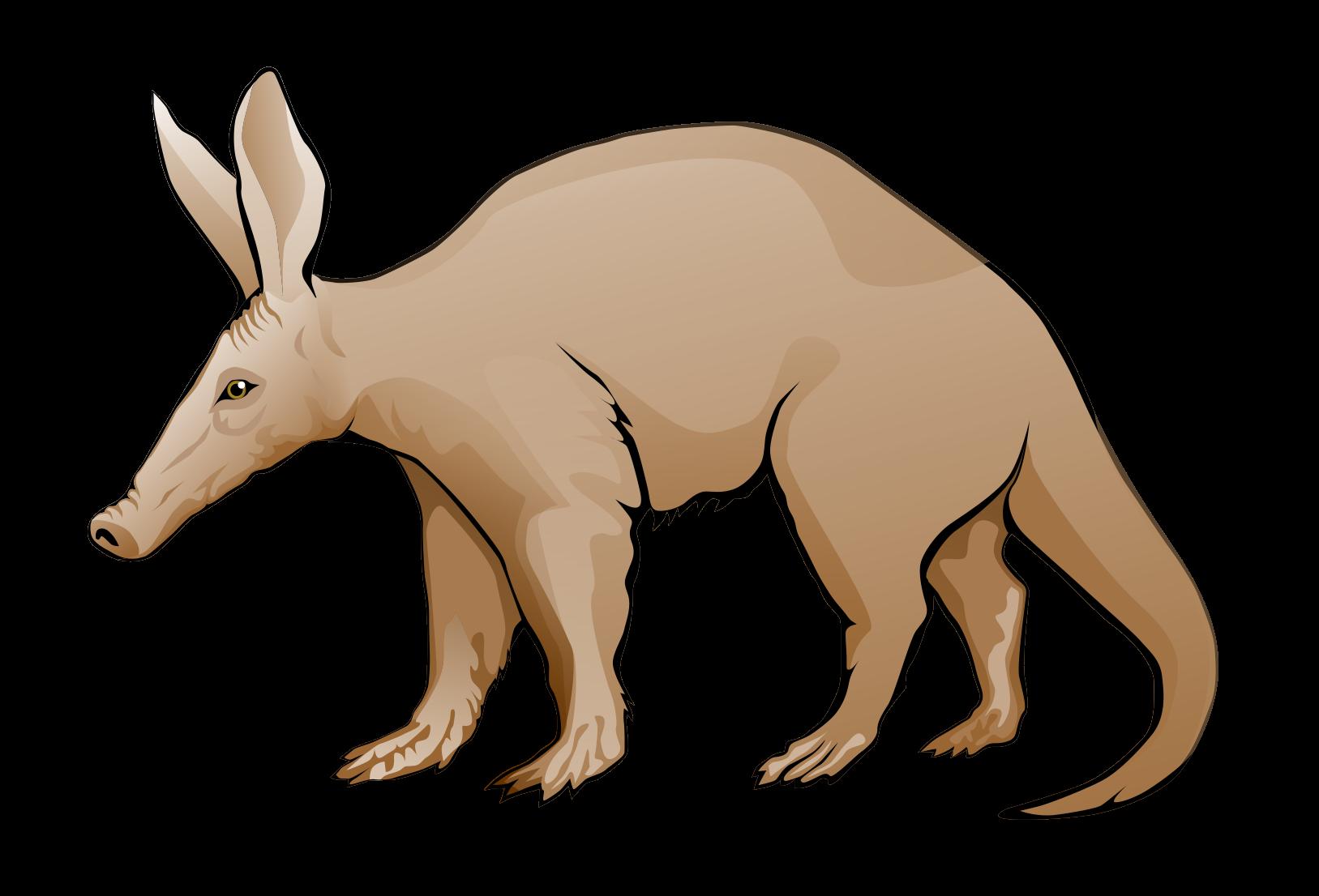 Aardvark Clipart.