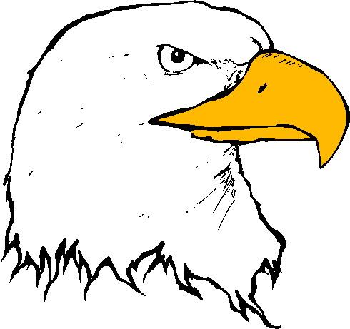 Free Eagle Images.