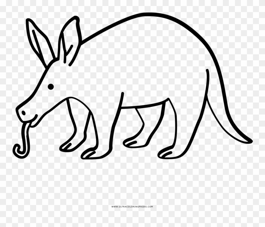 Aardvark Coloring Page.