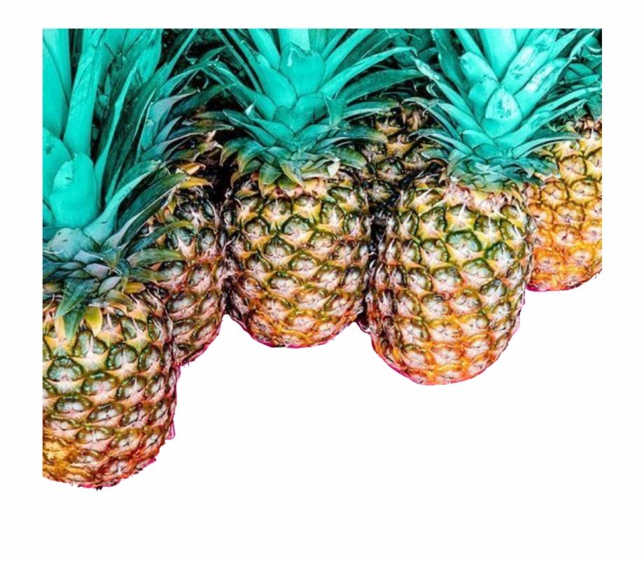 pineapple #abacaxi #freetoedit.
