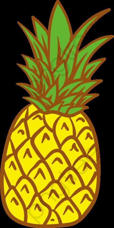 Vector De Abacaxi, Frutas, O Abacaxi, Abacaxi PNG e vetor para.