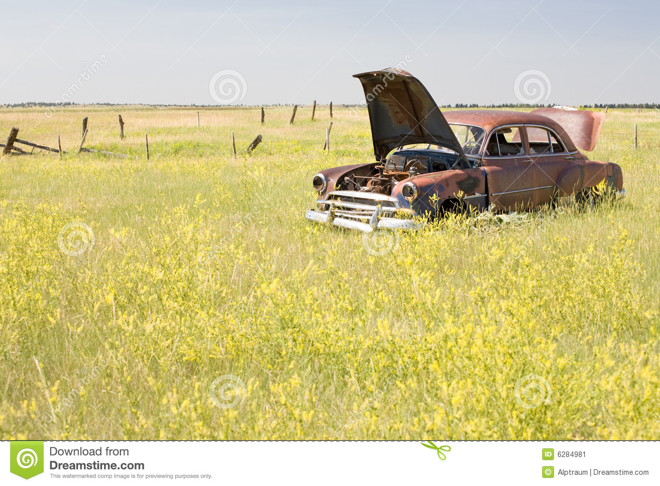 Abandoned Car Field Stock Photos, Images, & Pictures.