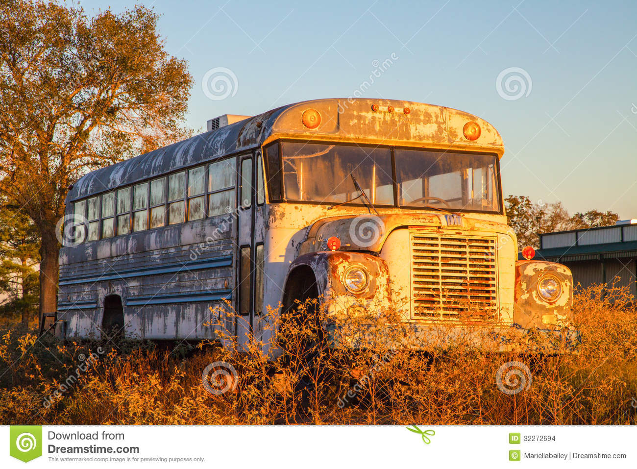 School Bus Junkyard Stock Photos, Images, & Pictures.