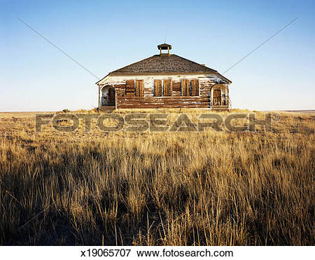Picture of USA, Colorado, Wild Horse, abandoned school house.