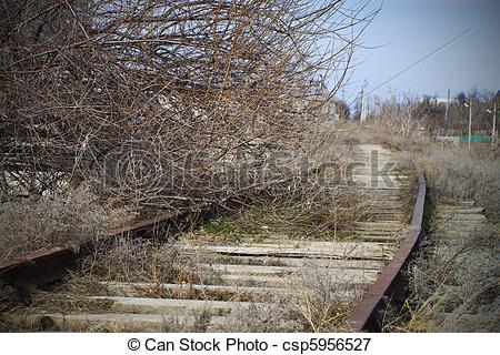 Picture of Tree on an abandoned railroad track. The crisis of.