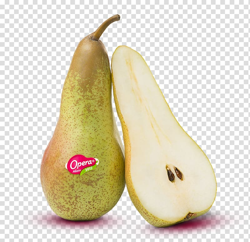 Conference pear Abate Fetel Fruit Abbot, pear transparent.