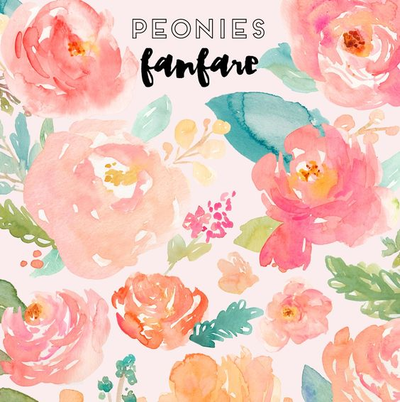 Watercolor Peonies Clipart.