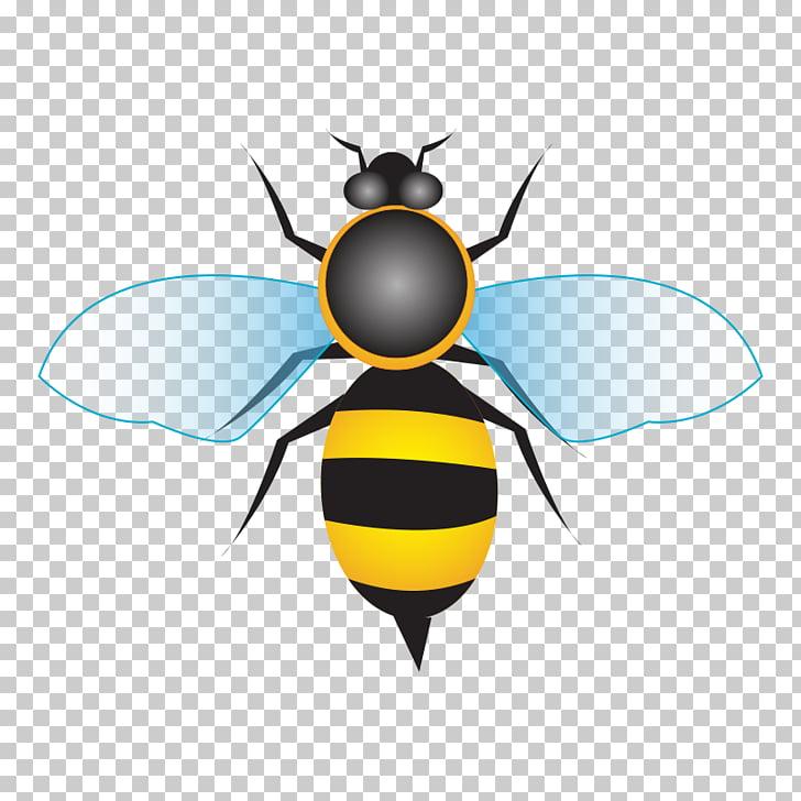 Miel de abeja miel de abeja, abeja, dibujos animados PNG.