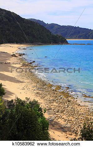 Stock Photo of Hiking in Abel Tasman National Park k10583962.