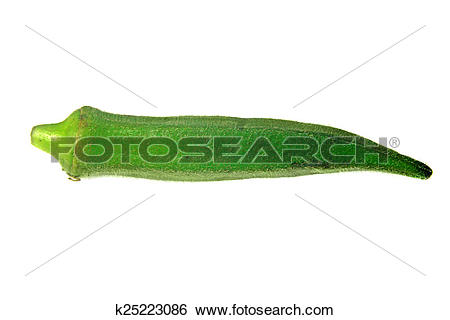 Abelmoschus esculentus Images and Stock Photos. 247 abelmoschus.