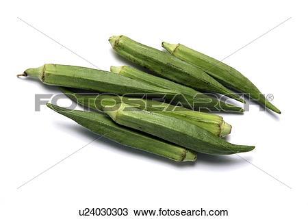 Stock Photo of Okra (Abelmoschus esculentus) u24030303.