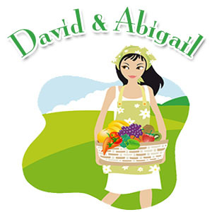 Bible Love Stories: David & Abigail.
