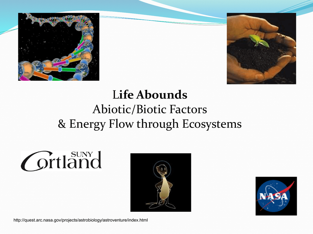 Changing Gears—Abiotic vs. Biotic Factors.