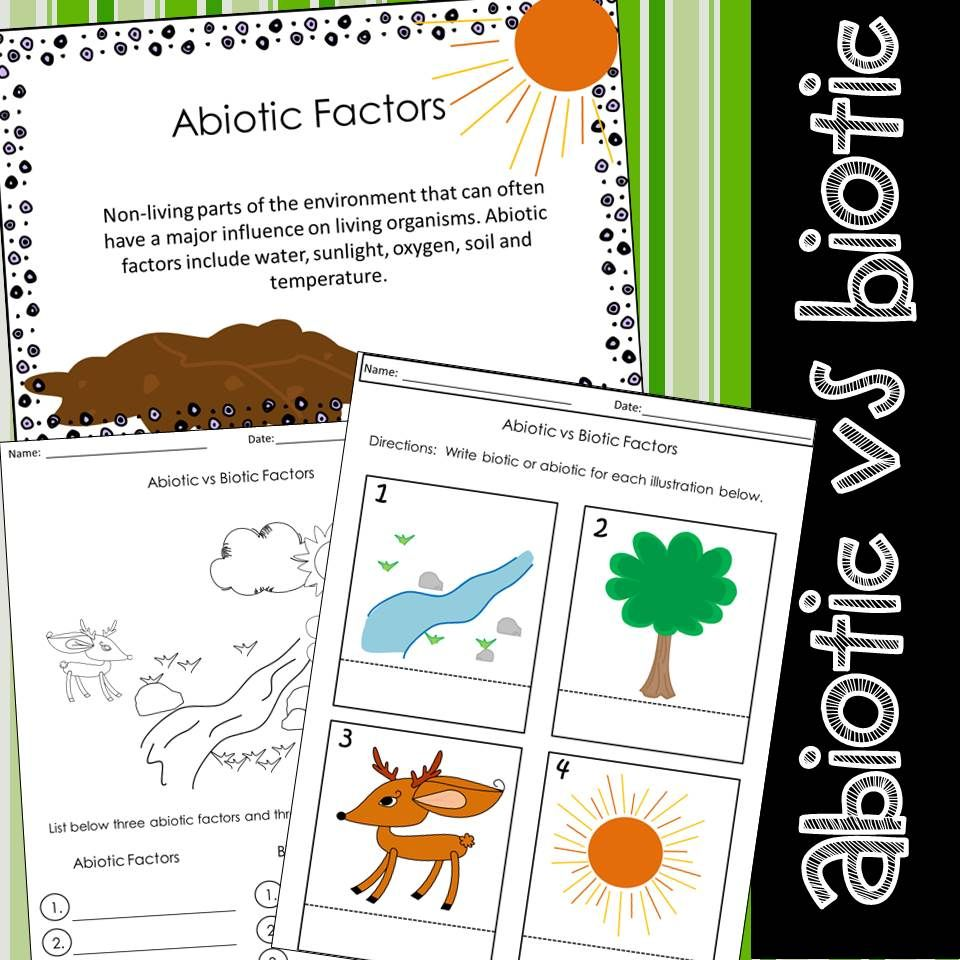 Abiotic & Biotic Factors Worksheets.