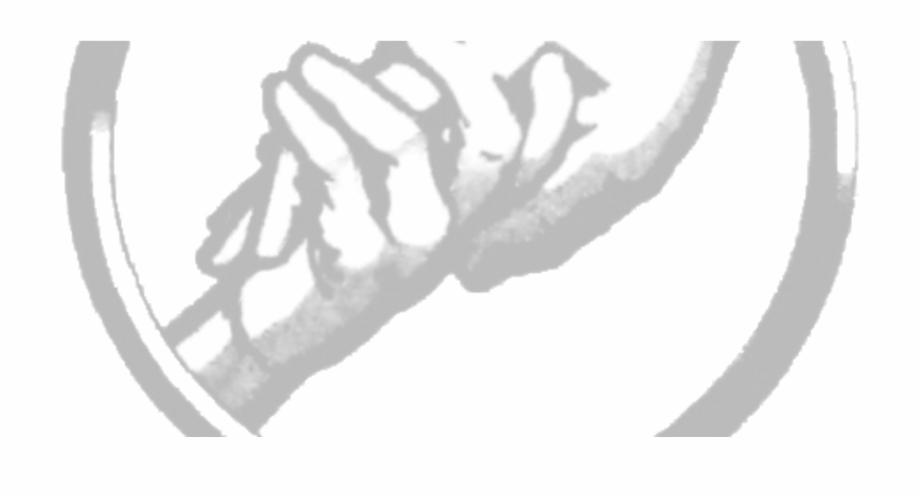 Abnegation Logo.