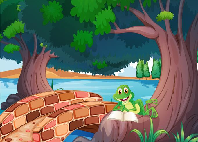 A frog reading under the tree beside a bridge.