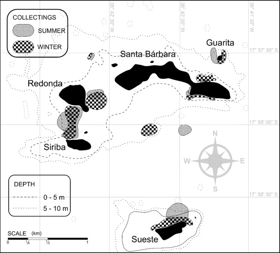 Macrophytobenthic flora of the Abrolhos Archipelago and the.