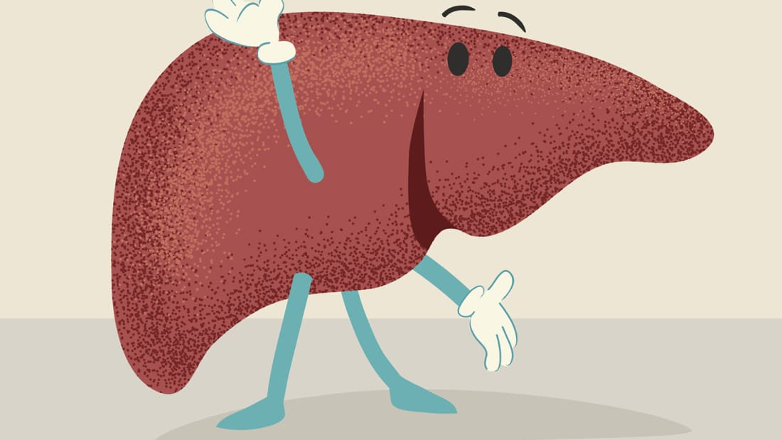 12 Bilious Facts About the Liver.