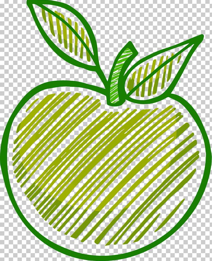 Drawing Apple PNG, Clipart, Abstract Lines, Adobe.