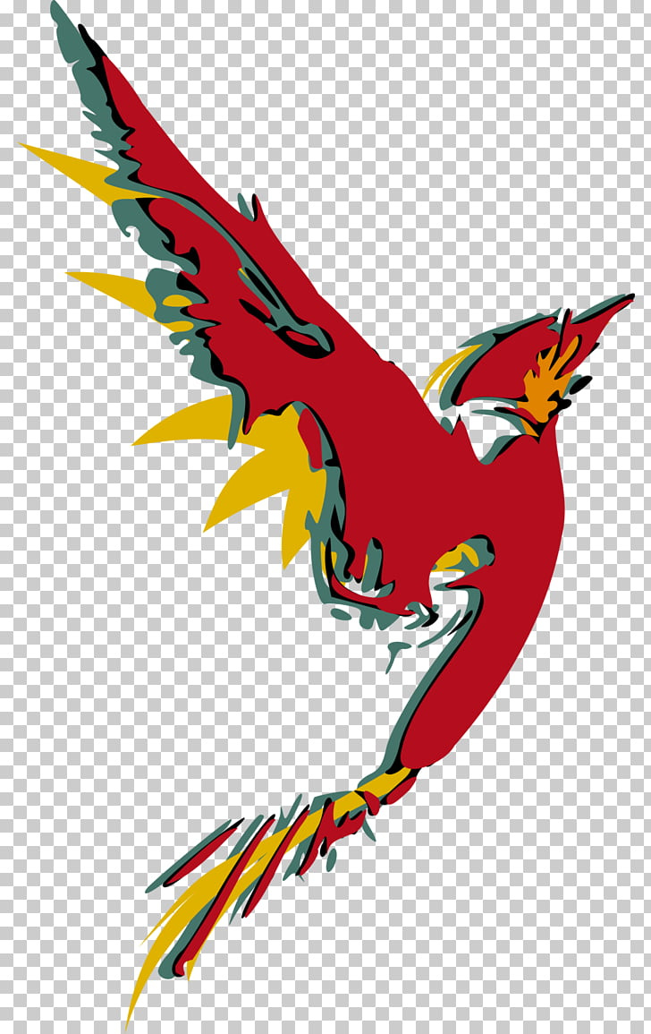 Macaw Art , abstract Bird PNG clipart.