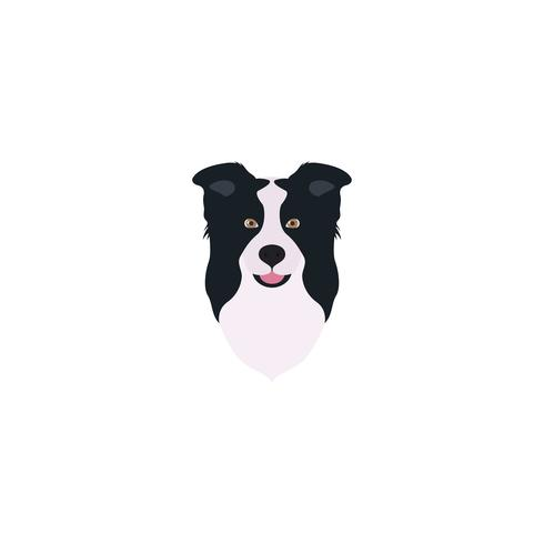 Abstract vector illustration of border collie head.